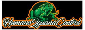 Wildlife Removal, Pest Control Near Me – Humane Iguana Control